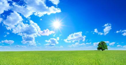 mark-i-solskin.jpg