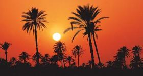 tunesia.jpg